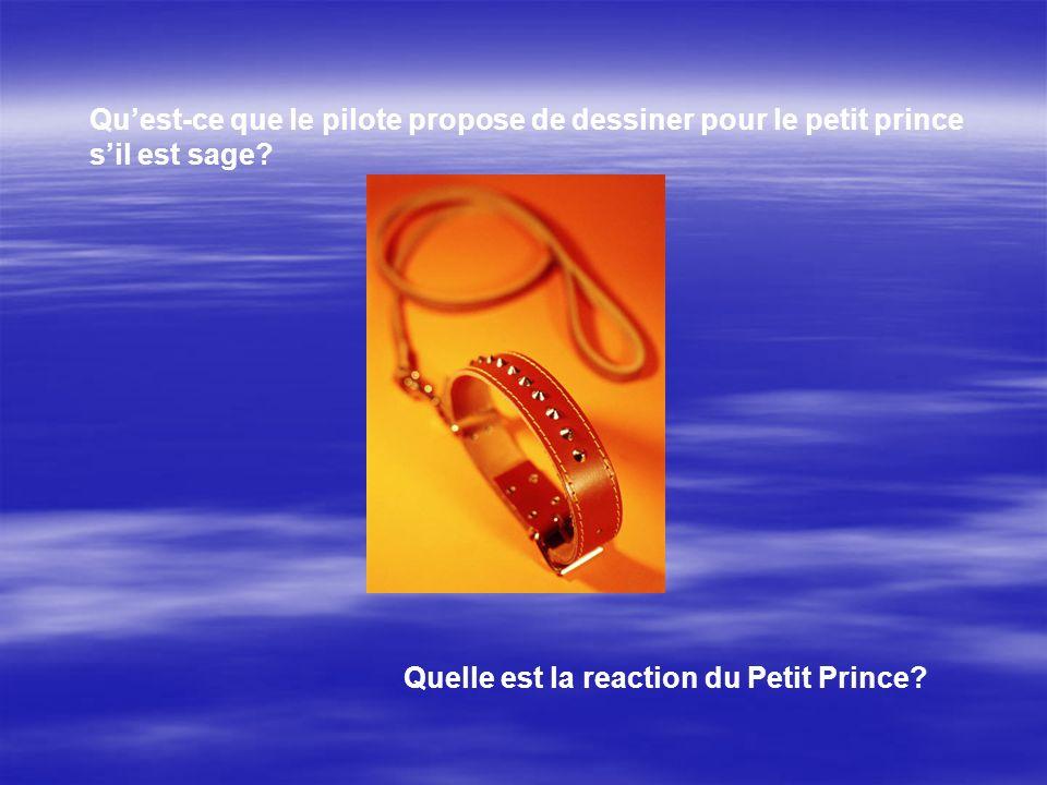 Quest-ce que le pilote propose de dessiner pour le petit prince sil est sage? Quelle est la reaction du Petit Prince?