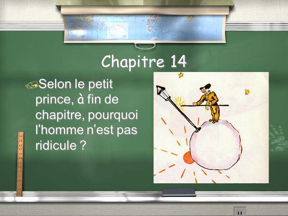 Chapitre 14 Le petit prince offrit l allumeur le conseil; qu est-ce que le petit prince dit