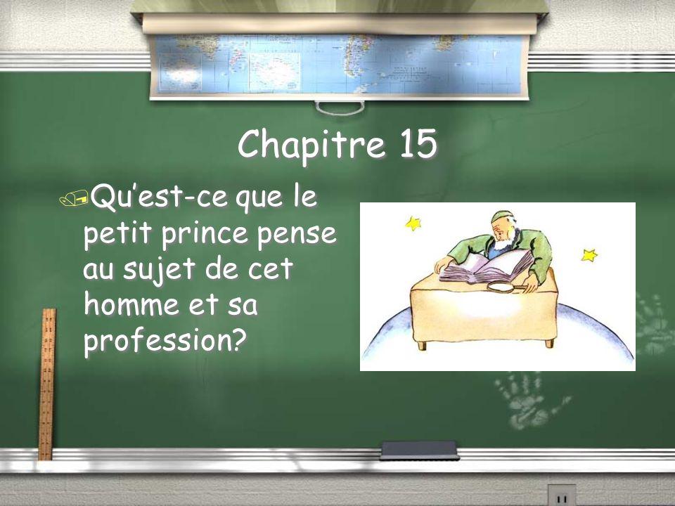 Chapitre 15 / Quest-ce que le petit prince pense au sujet de cet homme et sa profession?
