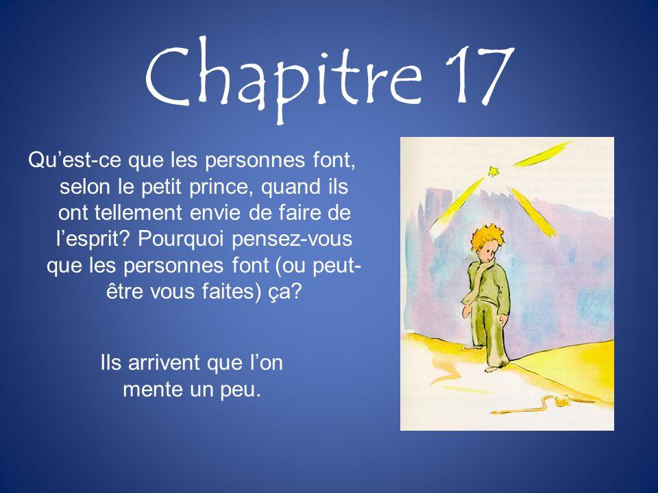 Chapitre 17 Quest-ce que les personnes font, selon le petit prince, quand ils ont tellement envie de faire de lesprit? Pourquoi pensez-vous que les pe