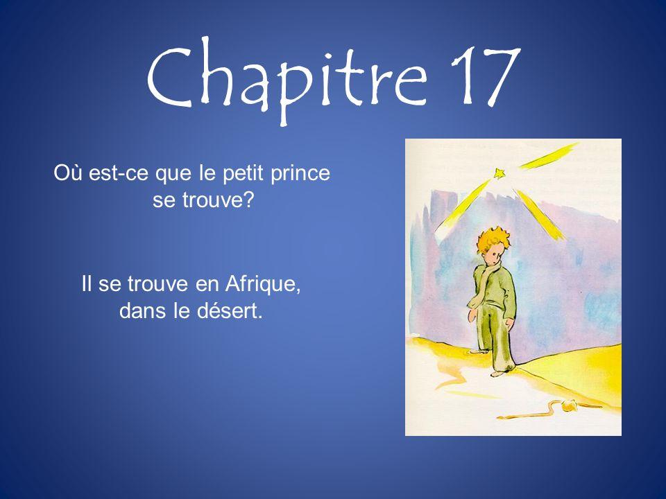 Chapitre 17 Où est-ce que le petit prince se trouve? Il se trouve en Afrique, dans le désert.