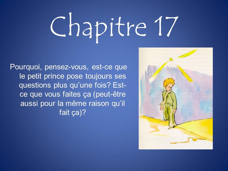 Chapitre 17 Pourquoi, pensez-vous, est-ce que le petit prince pose toujours ses questions plus quune fois? Est- ce que vous faites ça (peut-être aussi