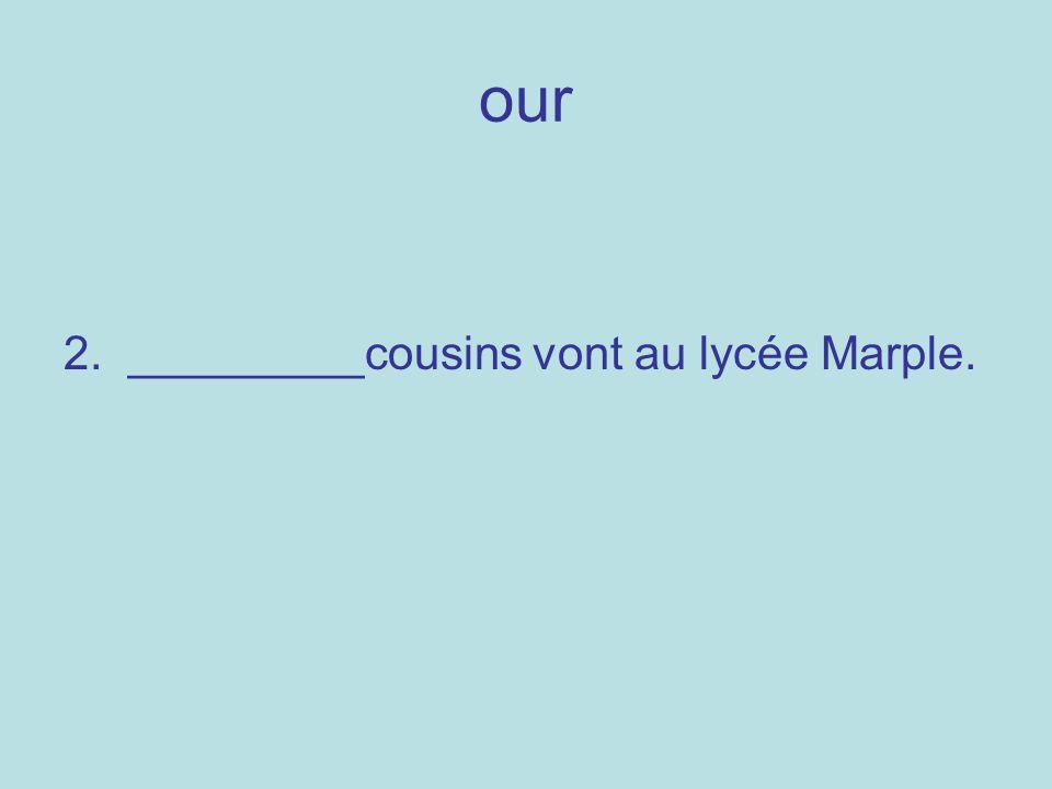 our 2. _________cousins vont au lycée Marple.