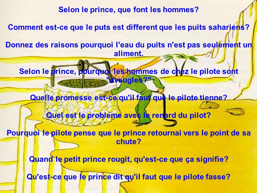 Selon le prince, que font les hommes? Comment est-ce que le puts est different que les puits sahariens? Donnez des raisons pourquoi l'eau du puits n'e