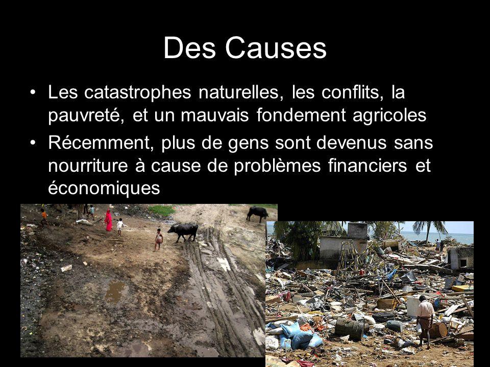 Des Causes Les catastrophes naturelles, les conflits, la pauvreté, et un mauvais fondement agricoles Récemment, plus de gens sont devenus sans nourriture à cause de problèmes financiers et économiques