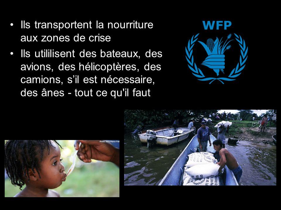 Ils transportent la nourriture aux zones de crise Ils utililisent des bateaux, des avions, des hélicoptères, des camions, sil est nécessaire, des ânes - tout ce qu il faut