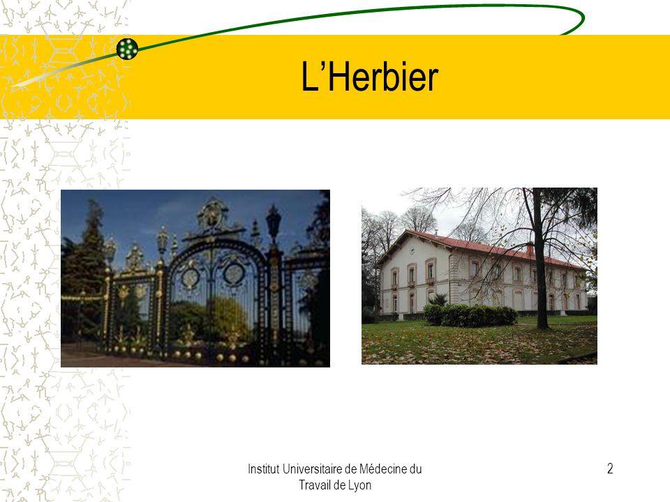 Institut Universitaire de Médecine du Travail de Lyon 2 LHerbier