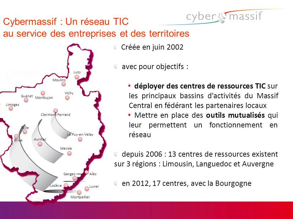 Cybermassif : Un réseau TIC au service des entreprises et des territoires Créée en juin 2002 avec pour objectifs : déployer des centres de ressources