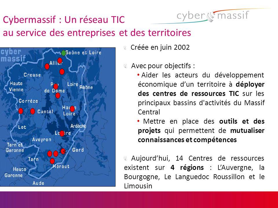 Cybermassif : Un réseau TIC au service des entreprises et des territoires Créée en juin 2002 Avec pour objectifs : Aider les acteurs du développement