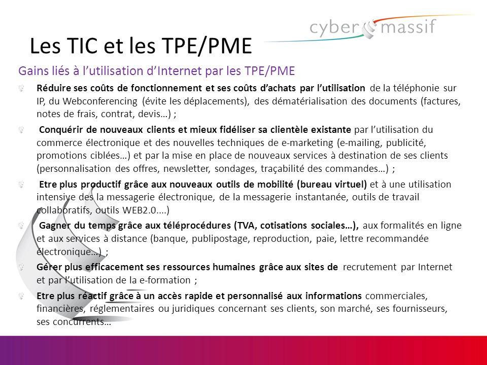 Enjeux des TIC pour les TPE/PME Donc : Accroitre sa visibilité sur son marché Développer son marché à lInternational Développer le e-commerce et par là même accroitre son chiffre daffaires Optimiser sa gestion comptable et financière Améliorer la performance de ses processus de production