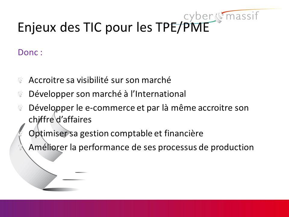 Enjeux des TIC pour les TPE/PME Donc : Accroitre sa visibilité sur son marché Développer son marché à lInternational Développer le e-commerce et par l