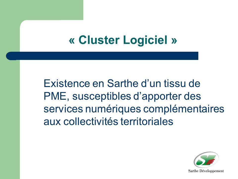 « Cluster Logiciel » Existence en Sarthe dun tissu de PME, susceptibles dapporter des services numériques complémentaires aux collectivités territoriales