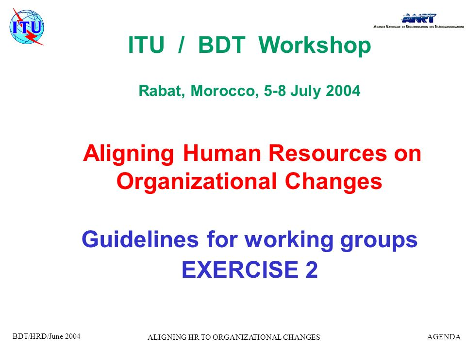 BDT/HRD/June 2004 AGENDA ALIGNING HR TO ORGANIZATIONAL CHANGES Reporter : –Appoint the reporter for the outcome of exercise Facilitator : –One of us (Jean-Claude, Yvette) will facilitate your group work when necessary Timing: –Part 1 : 60 minutes –Part 2 : 60 minutes Presentation to be done by the reporter of each group during 20 minutes on Wednesday, 7th July Please organise yourselves!