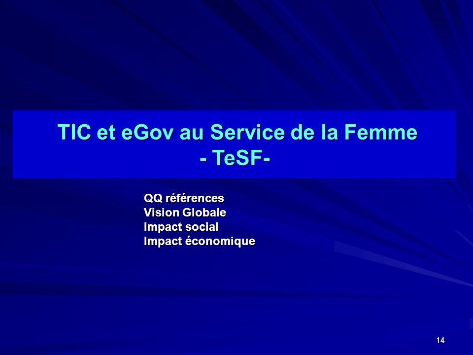14 TIC et eGov au Service de la Femme TIC et eGov au Service de la Femme - TeSF- QQ références Vision Globale Impact social Impact économique