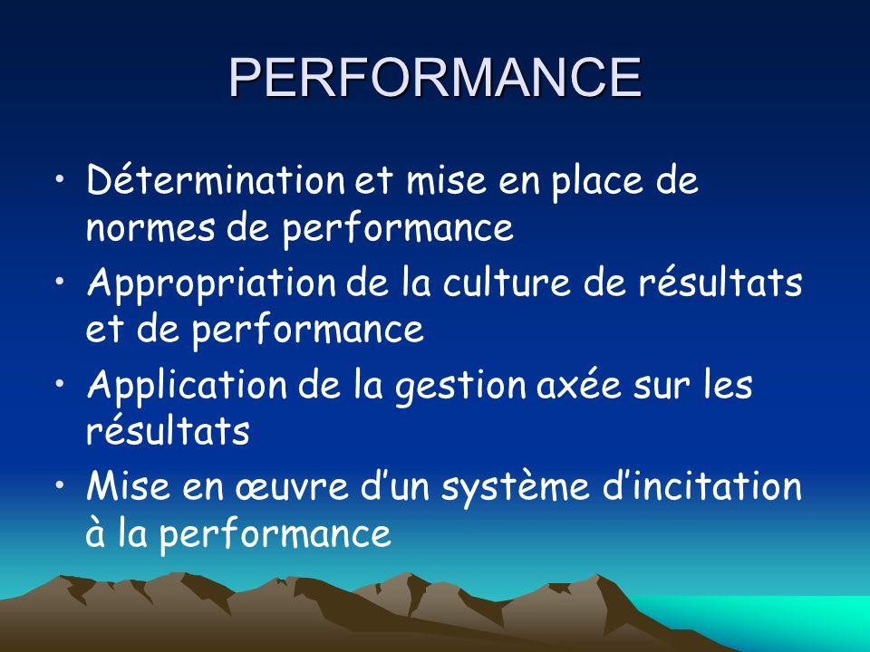 PERFORMANCE Détermination et mise en place de normes de performance Appropriation de la culture de résultats et de performance Application de la gestion axée sur les résultats Mise en œuvre dun système dincitation à la performance