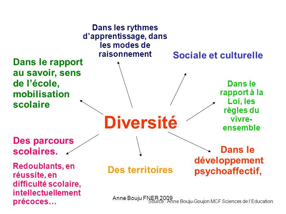 Anne Bouju FNER 2009 Diversité Sociale et culturelle Dans le rapport au savoir, sens de lécole, mobilisation scolaire Des parcours scolaires.