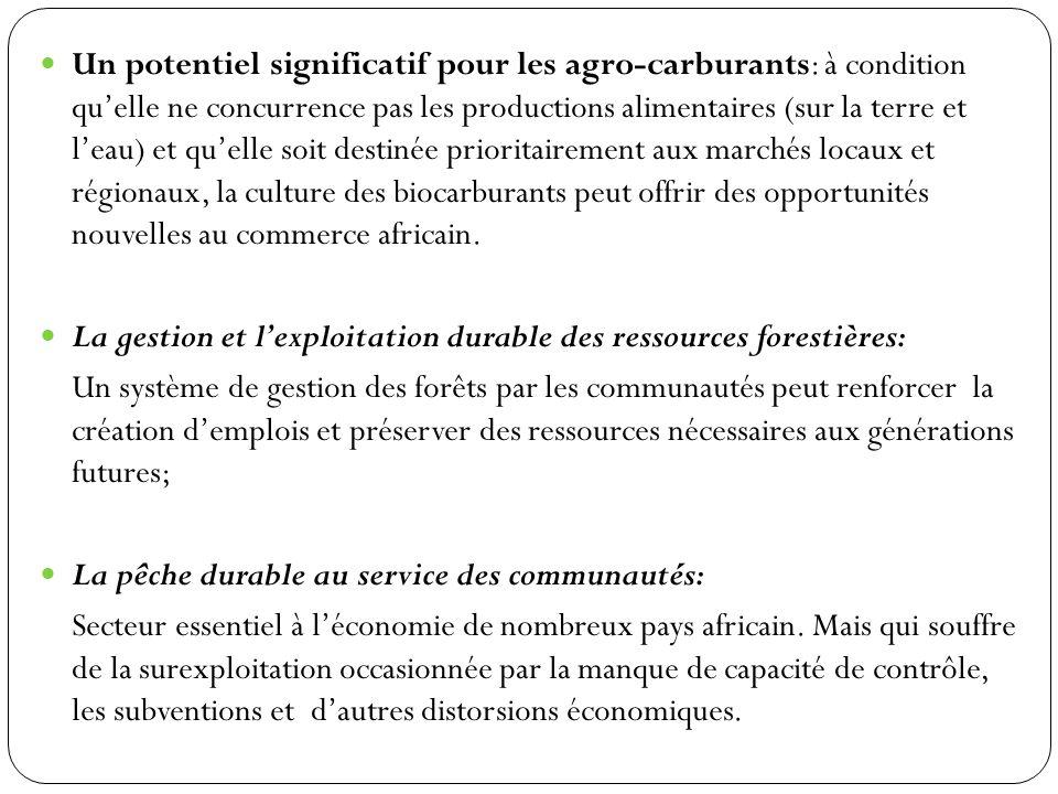 Un potentiel significatif pour les agro-carburants: à condition quelle ne concurrence pas les productions alimentaires (sur la terre et leau) et quell