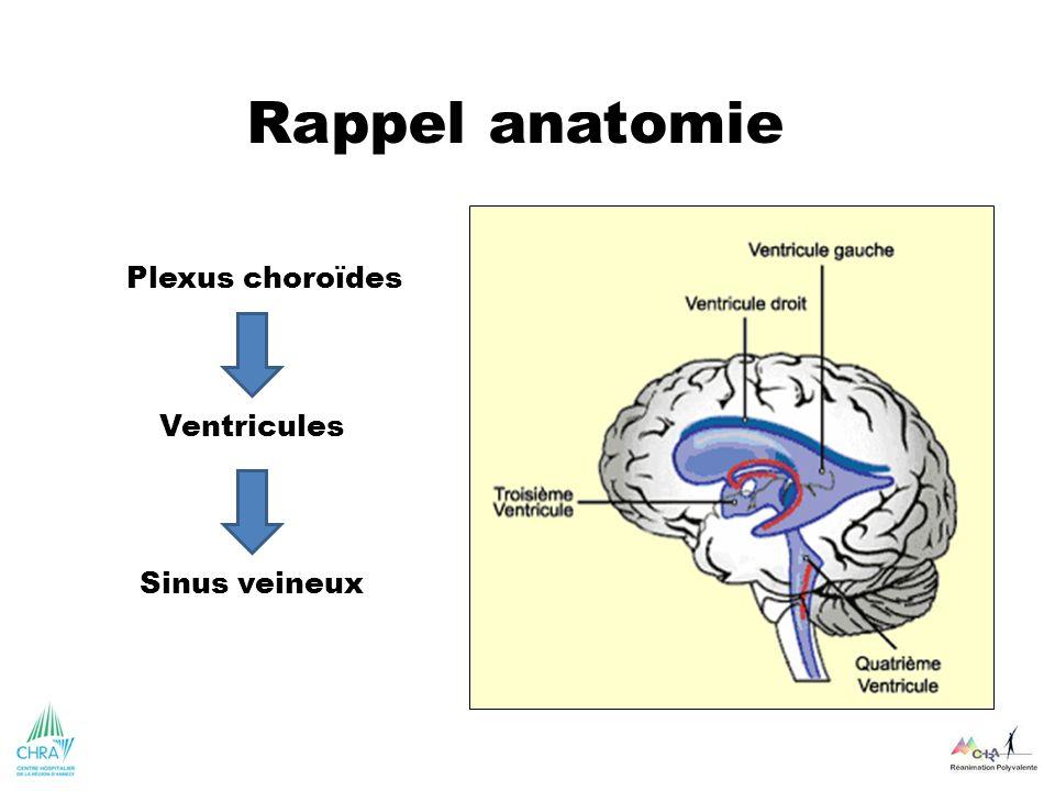 Plexus choroïdes Rappel anatomie Ventricules Sinus veineux