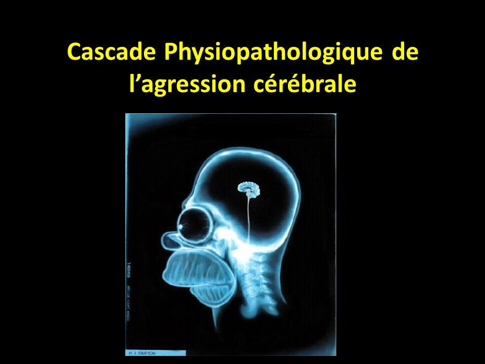 Cascade Physiopathologique de lagression cérébrale