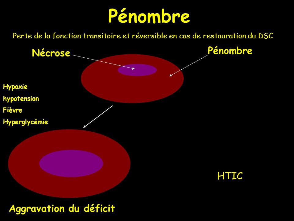 Pénombre Nécrose Aggravation du déficit Hypoxie hypotension Fièvre Hyperglycémie Pénombre Perte de la fonction transitoire et réversible en cas de res