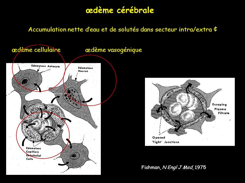 Fishman, N Engl J Med, 1975 œdème cellulaireœdème vasogénique Accumulation nette deau et de solutés dans secteur intra/extra ¢ œdème cérébrale