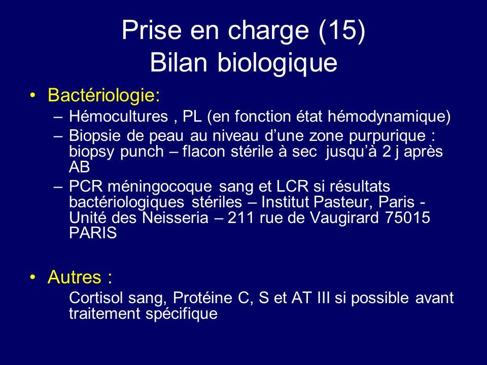Prise en charge (15) Bilan biologique Bactériologie: –Hémocultures, PL (en fonction état hémodynamique) –Biopsie de peau au niveau dune zone purpuriqu