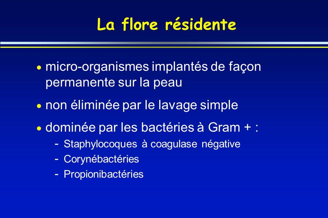 La flore résidente micro-organismes implantés de façon permanente sur la peau non éliminée par le lavage simple dominée par les bactéries à Gram + : -