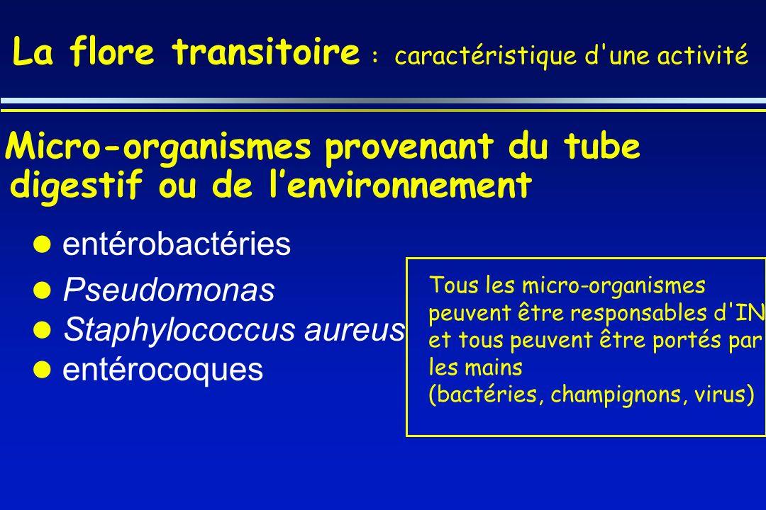 Micro-organismes provenant du tube digestif ou de lenvironnement entérobactéries Pseudomonas Staphylococcus aureus entérocoques La flore transitoire :