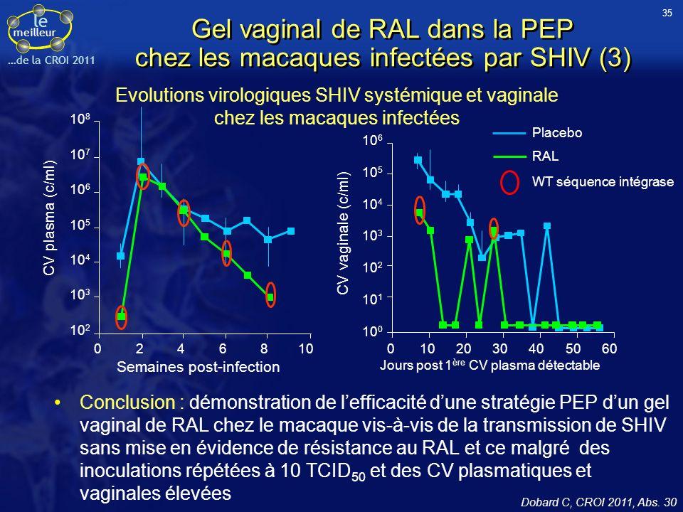 le meilleur …de la CROI 2011 Gel vaginal de RAL dans la PEP chez les macaques infectées par SHIV (3) Conclusion : démonstration de lefficacité dune stratégie PEP dun gel vaginal de RAL chez le macaque vis-à-vis de la transmission de SHIV sans mise en évidence de résistance au RAL et ce malgré des inoculations répétées à 10 TCID 50 et des CV plasmatiques et vaginales élevées Dobard C, CROI 2011, Abs.
