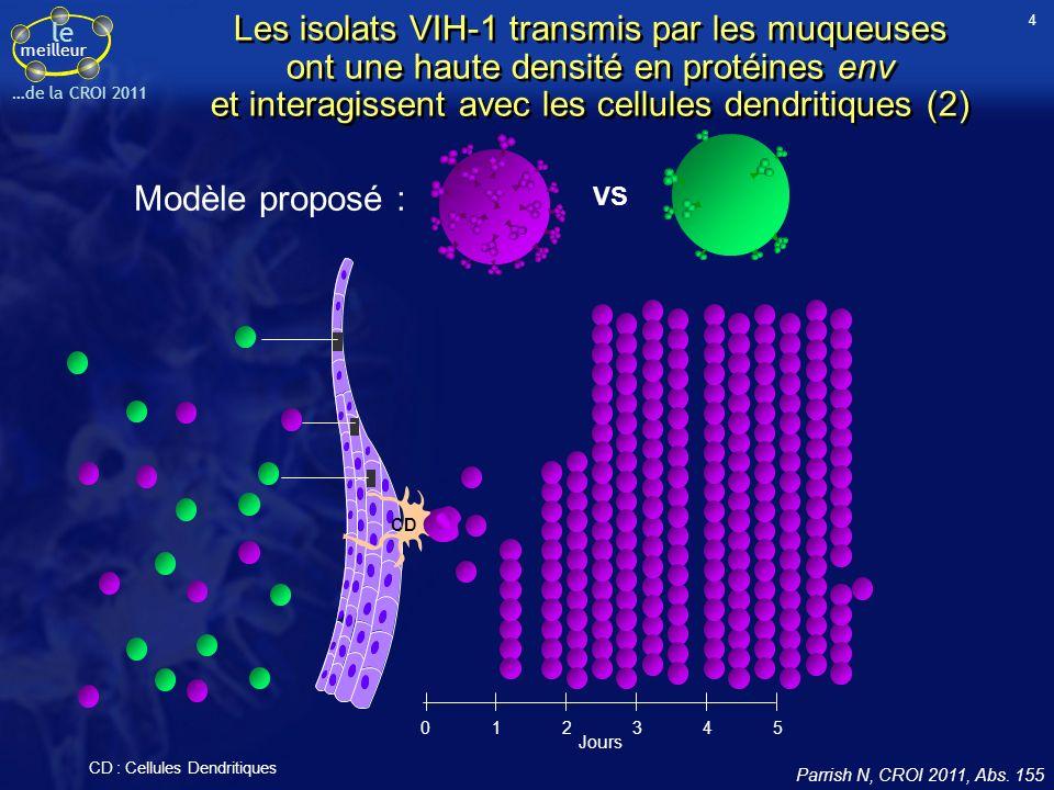 le meilleur …de la CROI 2011 012345 Jours CD VS Modèle proposé : CD : Cellules Dendritiques Les isolats VIH-1 transmis par les muqueuses ont une haute densité en protéines env et interagissent avec les cellules dendritiques (2) Parrish N, CROI 2011, Abs.
