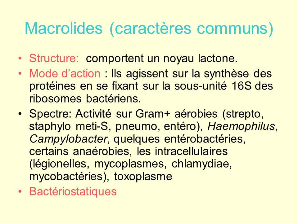 Macrolides (caractères communs) Structure: comportent un noyau lactone. Mode daction : Ils agissent sur la synthèse des protéines en se fixant sur la