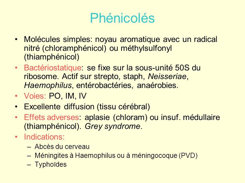 Phénicolés Molécules simples: noyau aromatique avec un radical nitré (chloramphénicol) ou méthylsulfonyl (thiamphénicol) Bactériostatique: se fixe sur