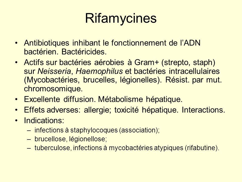 Rifamycines Antibiotiques inhibant le fonctionnement de lADN bactérien. Bactéricides. Actifs sur bactéries aérobies à Gram+ (strepto, staph) sur Neiss
