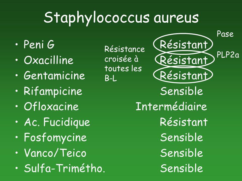 Staphylococcus aureus Peni G Résistant OxacillineRésistant GentamicineRésistant RifampicineSensible OfloxacineIntermédiaire Ac. FucidiqueRésistant Fos
