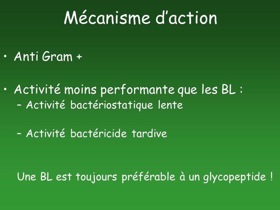Mécanisme daction Anti Gram + Activité moins performante que les BL : –Activité bactériostatique lente –Activité bactéricide tardive Une BL est toujou