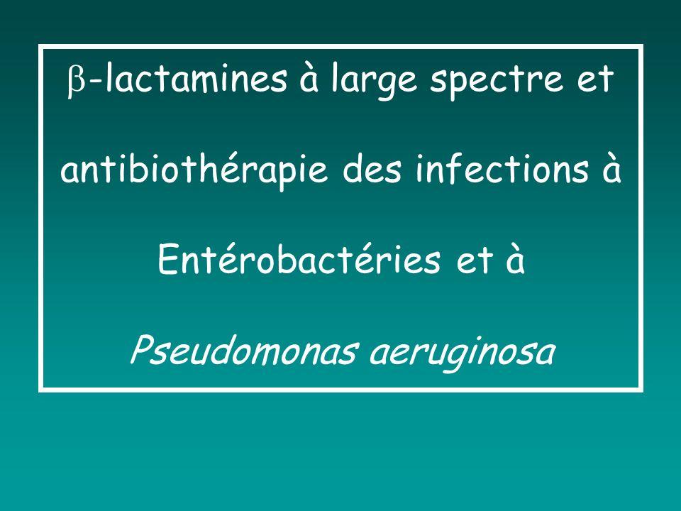 Antibiotiques actifs / EB « potentiellement » Pénicillines (exception : PéniG, PéniM) Céphalosporines, monobactam Carbapénèmes Aminosides Quinolones Fosfomycine Cotrimoxazole Chloramphénicol Tigécycline Résistance par mutation de la cible Résistance mal évaluée (Proteus, Morganella)