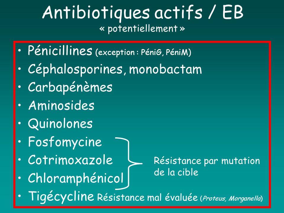 Antibiotiques actifs / EB « potentiellement » Pénicillines (exception : PéniG, PéniM) Céphalosporines, monobactam Carbapénèmes Aminosides Quinolones F