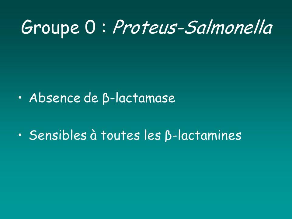 Groupe 0 : Proteus-Salmonella Absence de β-lactamase Sensibles à toutes les β-lactamines