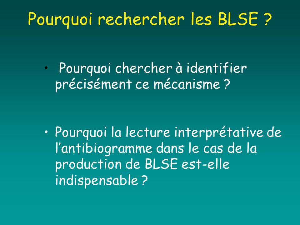Pourquoi rechercher les BLSE ? Pourquoi chercher à identifier précisément ce mécanisme ? Pourquoi la lecture interprétative de lantibiogramme dans le