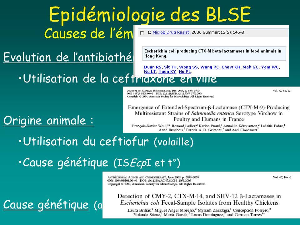 Epidémiologie des BLSE Causes de lémergence des CTX-M Evolution de lantibiothérapie : Utilisation de la ceftriaxone en ville Origine animale : Utilisa