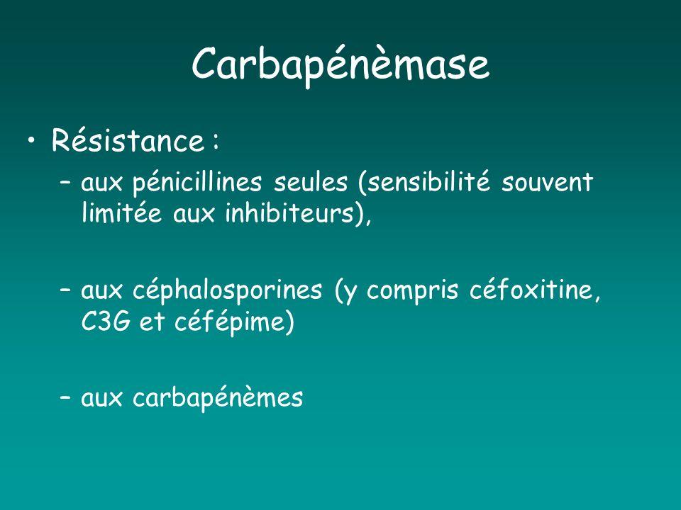 Carbapénèmase Résistance : –aux pénicillines seules (sensibilité souvent limitée aux inhibiteurs), –aux céphalosporines (y compris céfoxitine, C3G et