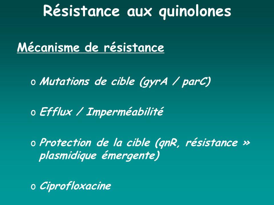 Résistance aux quinolones Mécanisme de résistance oMutations de cible (gyrA / parC) oEfflux / Imperméabilité oProtection de la cible (qnR, résistance