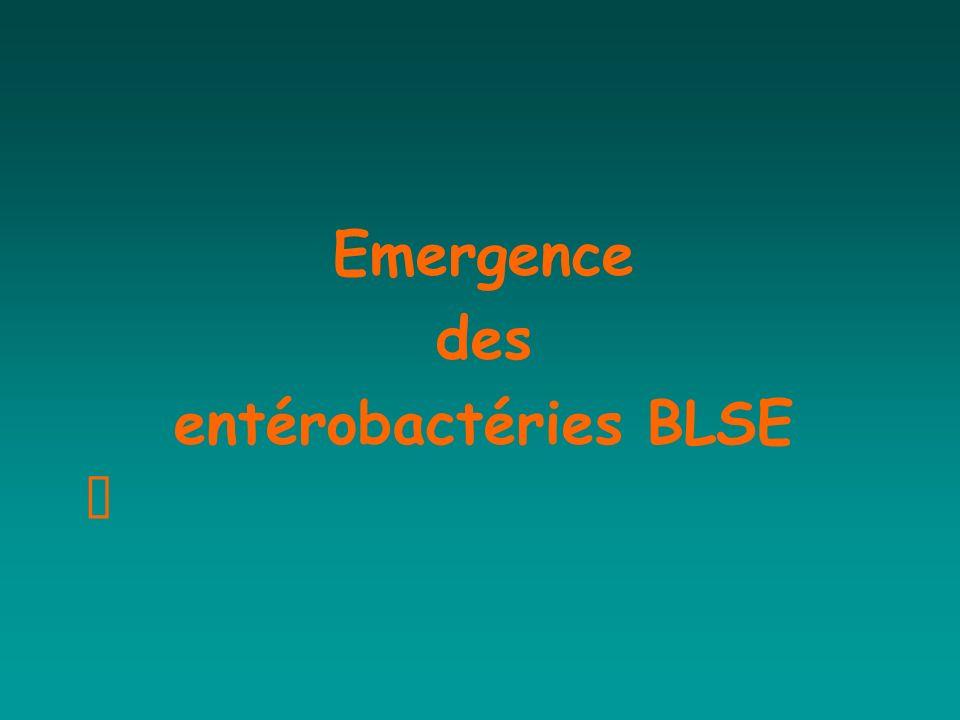 Emergence des entérobactéries BLSE