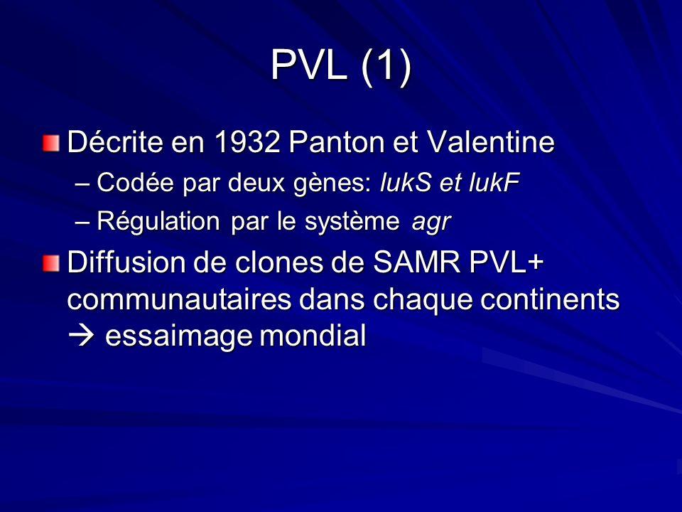 PVL (1) Décrite en 1932 Panton et Valentine –Codée par deux gènes: lukS et lukF –Régulation par le système agr Diffusion de clones de SAMR PVL+ communautaires dans chaque continents essaimage mondial