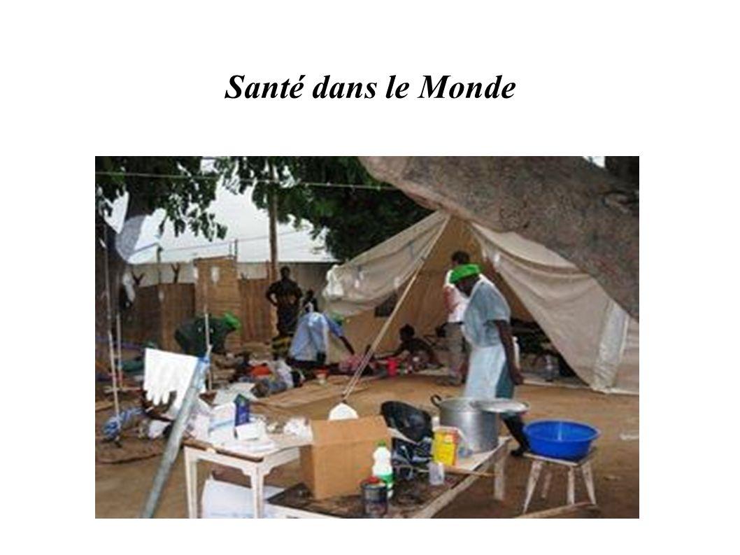 Grandes Epidémies Rougeole : encore 600.000 décès par an principalement en Afrique rôle +++ de la malnutrition infantile ==> mortalité diminuée de 88% depuis le PEV Méningites à méningocoques : 200.000 décès, « ceinture méningitique » de l Afrique Grippe : - saisonnière : interhumaine - aviaire : H5N1 - porcine : A, H1N1 ==> risque de pandémie : létalité ++ chez très jeunes et séniors dans les pays industrialisés, chez enfants avec malnutrition dans les PED
