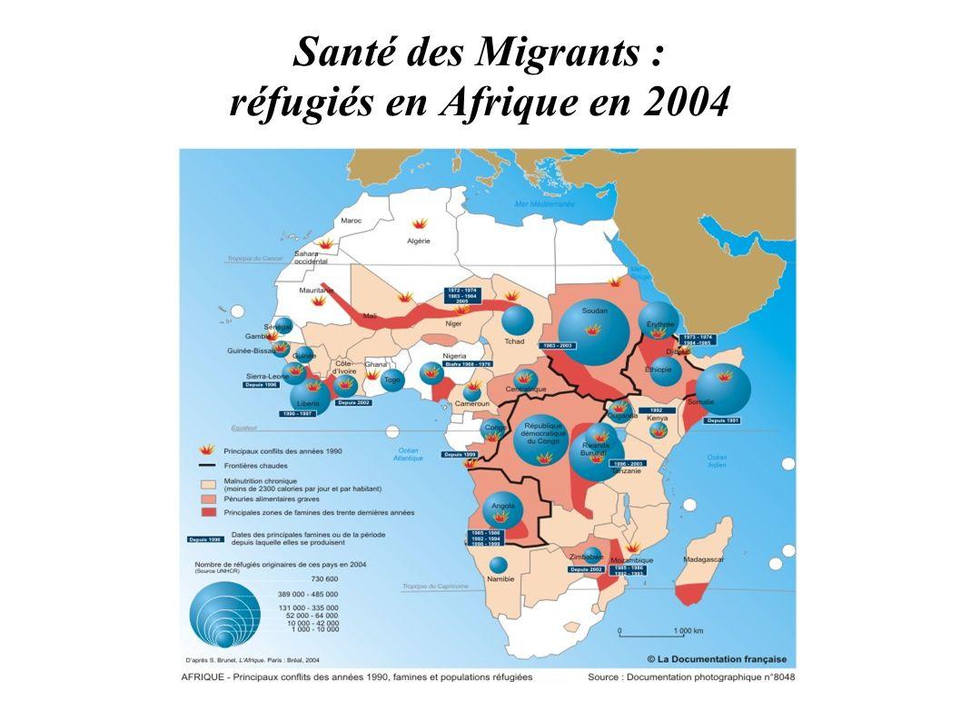 Santé des Migrants : réfugiés en Afrique en 2004