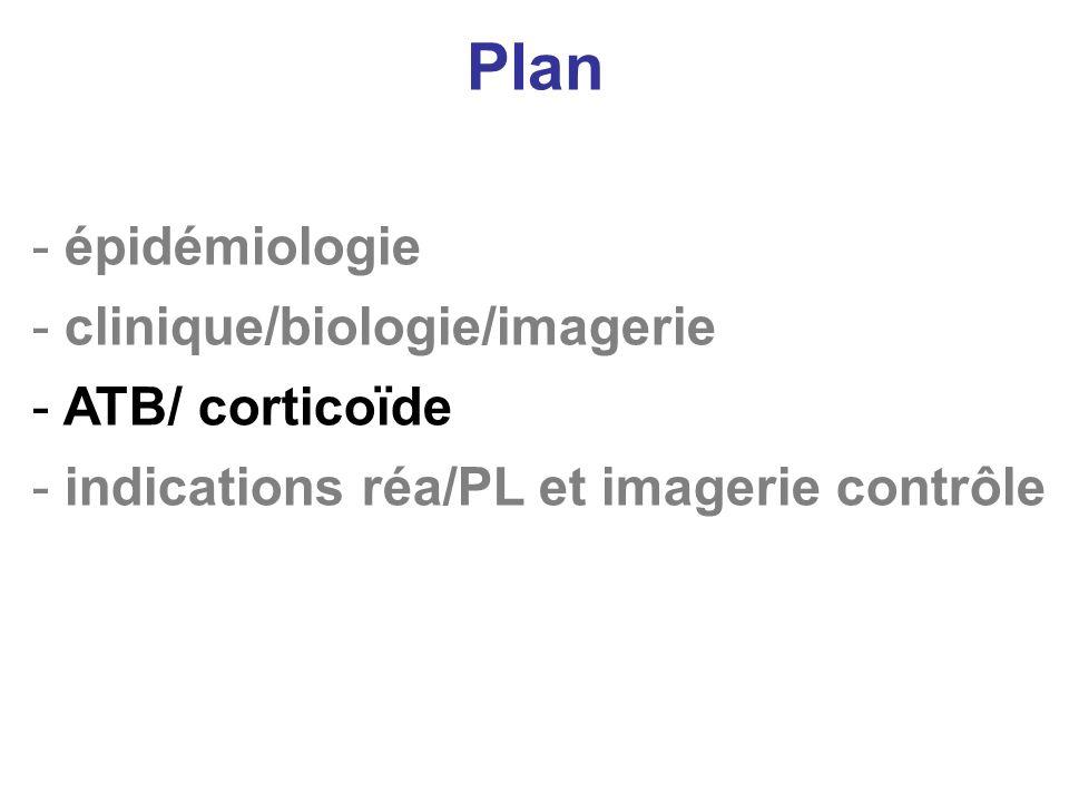 Plan - épidémiologie - clinique/biologie/imagerie - ATB/ corticoïde - indications réa/PL et imagerie contrôle