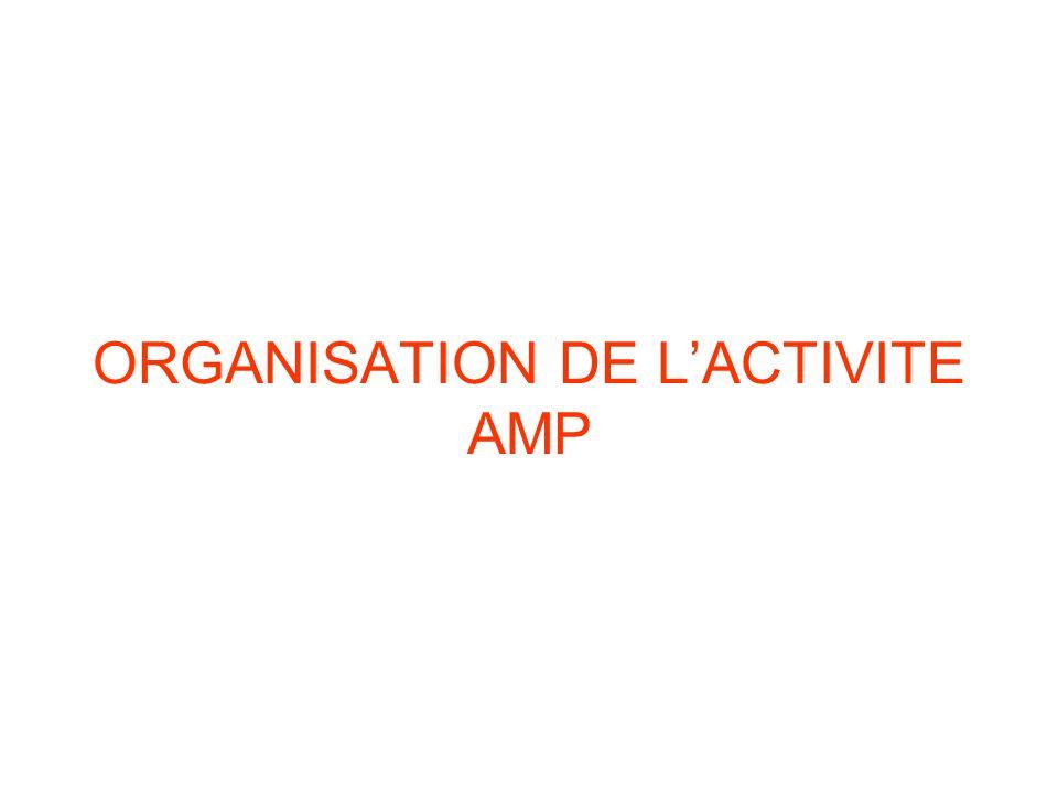 ORGANISATION DE LACTIVITE AMP
