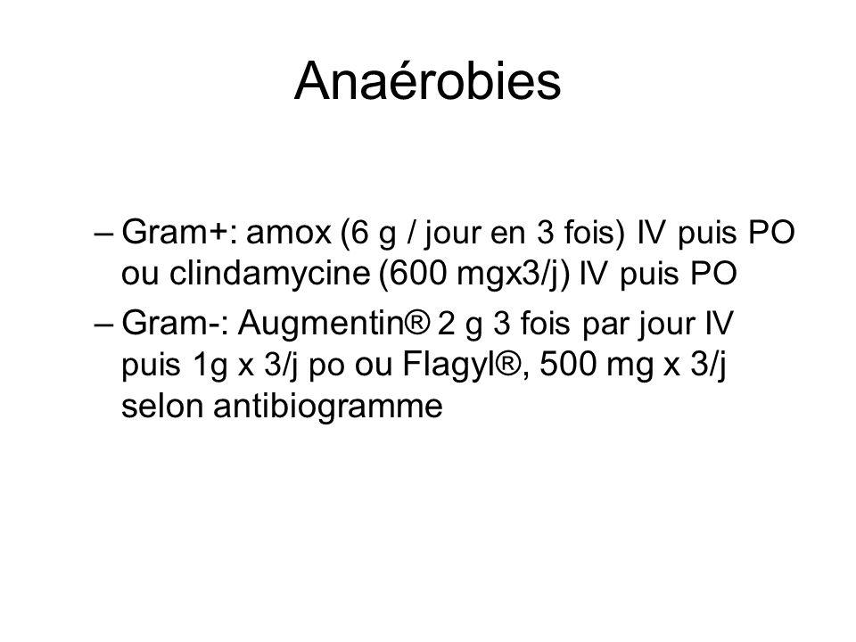 Anaérobies –Gram+: amox ( 6 g / jour en 3 fois) IV puis PO ou clindamycine (600 mgx3/j) IV puis PO –Gram-: Augmentin® 2 g 3 fois par jour IV puis 1g x