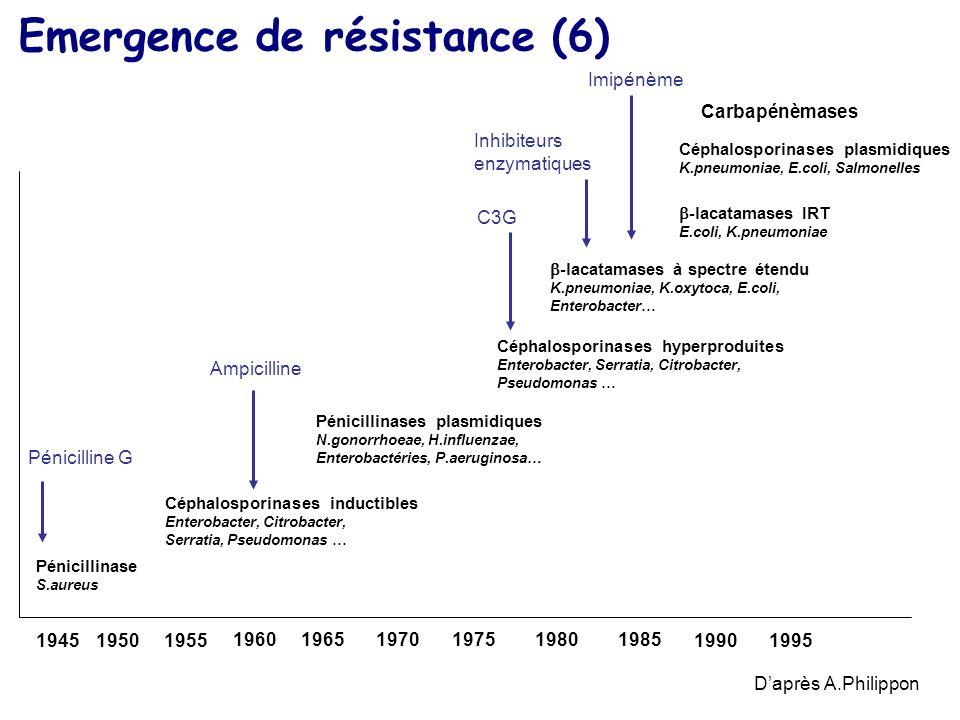 16 Emergence de résistance (6) Daprès A.Philippon 194519501955 196019651970197519801985 19901995 Céphalosporinases inductibles Enterobacter, Citrobact
